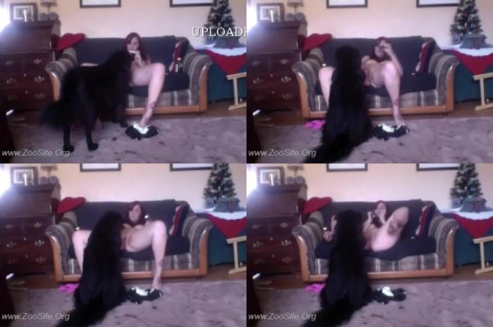 153 WebC Amateur Dog Show 2 - Amateur Dog Show 2 - Real ZooSex Cam