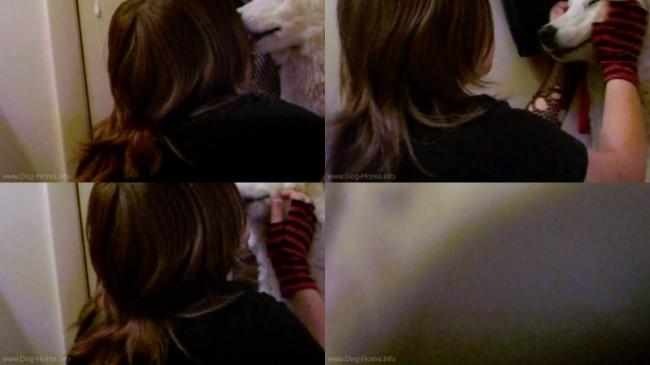 0604 DgSx Kissing Dog - Kissing Dog - Dog Bestiality Video